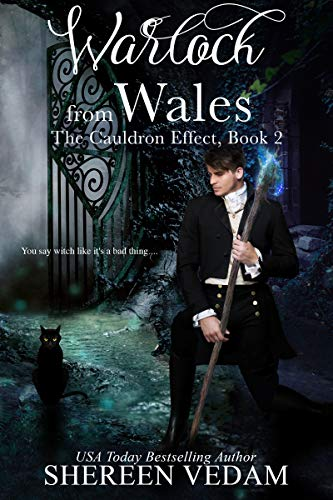 Book Cover of Warlock from Wales: The Cauldron Effect, Book 2