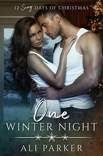 Book Cover of One Winter Night: A Sexy Bad Boy Holiday Novel (The Parker's 12 Days of Christmas Book 1)