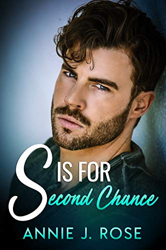 Book Cover of S is for Second Chance (Office Secrets Book 2)