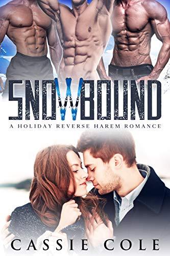 Book Cover of Snowbound: A Holiday Reverse Harem Romance