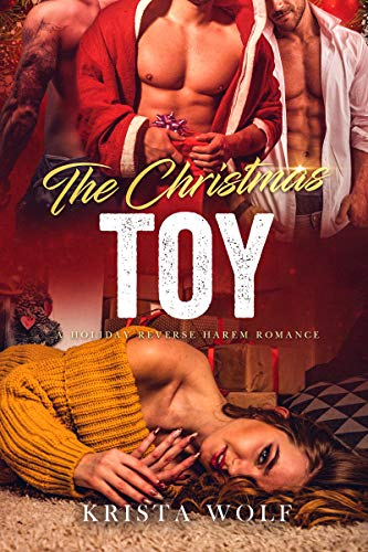 Book Cover of The Christmas Toy - A Holiday Reverse Harem Romance