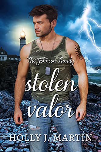 Book Cover of Stolen Valor : A military forbidden love, standalone romance (The Johnson Family Book 7)